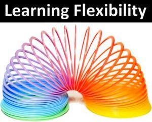 learning-flexibility