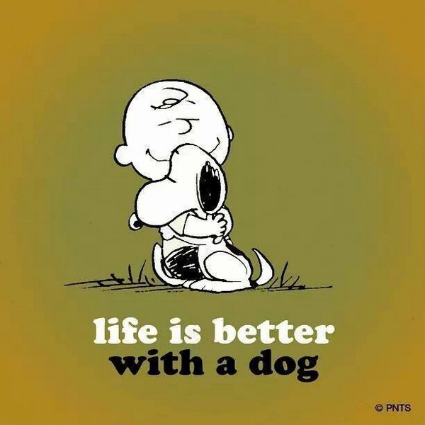I Love My Dog Quotes Simple Dogquotes76  Life According To Somebody